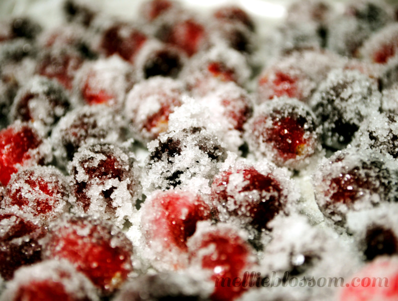 Cranberry Chocolate Cake Recipe (with Candied Cranberries) - mellie ...