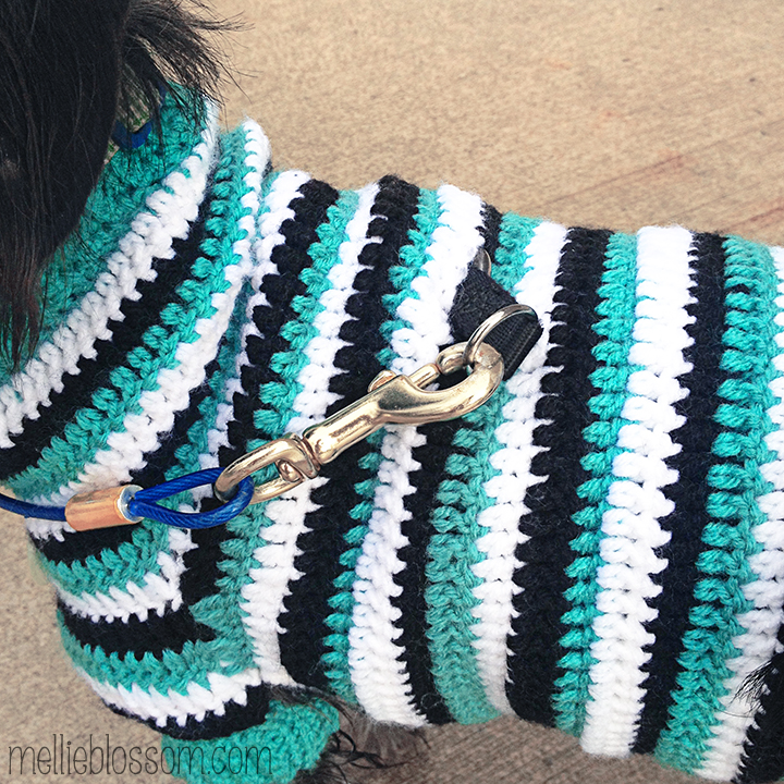 Free Pattern Crochet Dog Jacket : Crochet Dog Sweater - mellie blossom